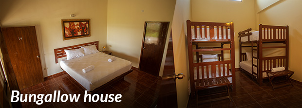 Bungallow house (6 to 10 people)